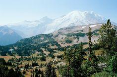 Mt. Rainier National Park Washington [OC] [15451024]