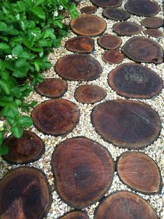 garten pflaster Wood and gravel walkway by Ecologia: Edible + Ecological Landscapes Garden Paving, Garden Stones, Garden Paths, Florida Landscaping, Front Yard Landscaping, Landscaping Ideas, Landscaping Plants, Inexpensive Landscaping, Backyard Walkway