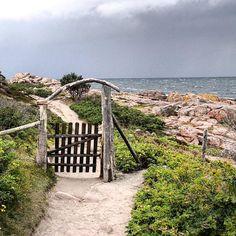 Gate to the roundway at the northcape of Bornholm. #bornholm #hiking #island #hammer #hammerknuden #hammeren #gate #nature #denmark #danmark #dänemark