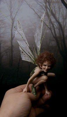 Fairystudiokallies: Lixy Fairy World Keka❤❤❤