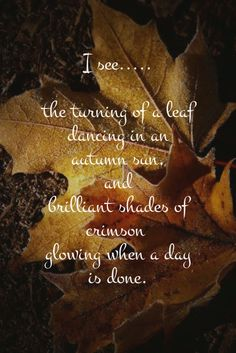 """I see ..... the turning of a leaf"" ~ Words by Mattie Elliott .... More"
