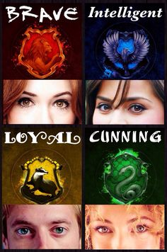 Brave, Intelligent, Loyal, Cunning ~The Companions Pt. 2