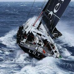 100ft SuperMaxi Perpetual Loyal