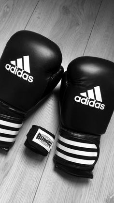 Aspen//I put my boxing gloves on. I was warmed up and in the ring waiting for my opponent. I glance and see you in the crowd. The match starts. I throw the first punch knocking the guy to the ground