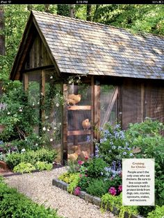 What a cute chicken coup' This is sortof a strange board to pin this to, but 'landscaping' seemed odd too :)