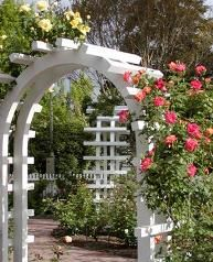 """Rose Arbor at Luther Burbank Home and Gardens. Have your ceremony or wedding at """"…the chosen spot of all this earth…""""Luther Burbank, 1875"""