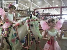 Horse costume My girls and their pony as the cowgirl fairies