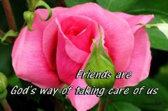 thanks for being a friend in need - Google Search