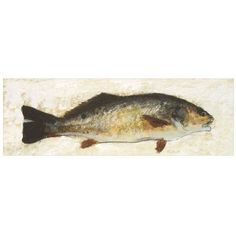 Catch Of The Day I by Eazl Premium Gallery Wrap, Size: 20 x 60, Multicolor