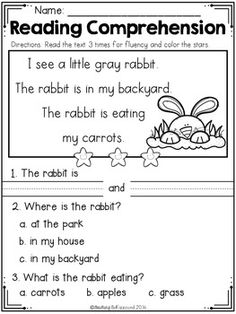 Reading Comprehension Passages For Beginning Readers (Spri