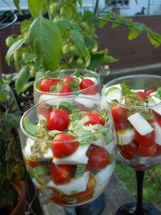 Caprese Parfaits are the perfect appetizer, starter or salad for entertaining during the holidays! What a great alternative to the usual finger food we're served at holidays. Salade Caprese, Tomato Caprese, Appetizer Recipes, Salad Recipes, Appetizers, Healthy Recipes, Great Recipes, Favorite Recipes, Soup And Salad