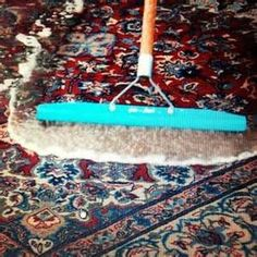 Rug cleaners chepstow
