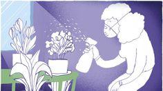 La ola de calor dispara las alergias al polen y agrava los síntomas