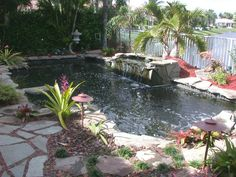 Pool ponds | Halo Pond & Garden..these pool ponds are  just the coolest ..