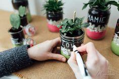 Pour la fête des grands-mères, des mamans ou juste pour le plaisir d'offrir... voici un tuto plante et carte à offrir « fait main » à faire avec les enfants. #grandmere #maman #fete #fetedesmeres #fetedesgrandsmeres #cadeau #personnalisé #tuto #diy #enfant #facile #plaisirdoffrir #terrarium #plante #carte Grands Pots, Voici, Terrarium, Handmade, Colored Sand, Glass Jars, Terrariums