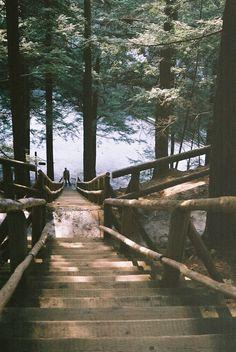 Stairs to the Sea, Nova Scotia, Canada photo via hanon www.liberatingdivineconsciousness.com