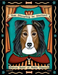 Shetland-Sheepdog-Sheltie-Patron-St-of-Ankle-Nippers-8x10-Art-Print-Fun