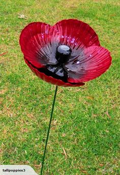 1X LARGE HEIGHT TALL POPPY ~ By Wayne Morrison ~ | Trade Me
