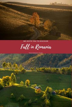 The best of fall colors in Romania in 13 pictures - True Romania We The Best, Romania, Places To Go, Good Things, Landscape, Fall, Amazing, Pictures, Color