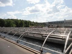 Shepherd of the Hills Fish Hatchery (Branson) - 2020 All You Need to Know BEFORE You Go (with Photos) - Tripadvisor Vacation Places, Vacation Spots, Vacations, Great Places, Places To See, Branson Vacation, Fish Hatchery, Branson Missouri, Christmas Travel