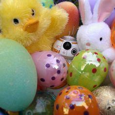 Happy Easter!!  #egghunt #easterbunny  #peep #eastereggs  #happyeaster  #bunny #chick #bb8 #bb8buddy  #sphero #bb8sphero  #starwars #theforceawakens by bb8buddy