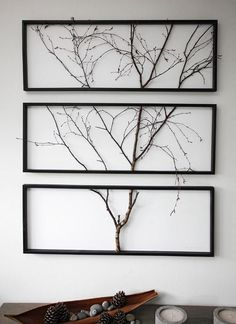 An actual tree branch in three separate frames. Just beautiful.  I'm thinking silver birch.