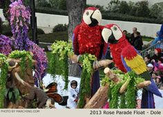 Photos of all the floats from the 2013 Tournament of Roses Parade held January 1, 2013 in Pasadena, Calif.