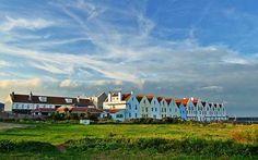 Alderney: Channel island haven for wildlife - Telegraph
