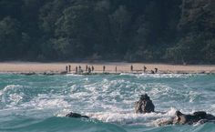 Sentinelese people will kill you if you go near their island. Survival International