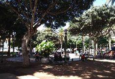 La plaza más céntrica y cosmopolita de Puerto de la Cruz #viajarapuertodelacruz #puertodelacruz #tenerife #plazadelcharco #plaza Tenerife, Plaza, Street View, Cosmopolitan, Canary Islands, Street, Teneriffe