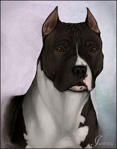 Jamma by Sanglamore on DeviantArt Scary Drawings, Dark Art Drawings, Horse Drawings, Cute Animal Drawings, Mermaid Wallpaper Backgrounds, Pitbull Drawing, Scary Dogs, Bike Sketch, Dog Artist