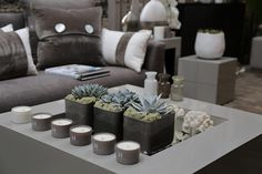 A selection of the new Kelly Hoppen London range taken at the press launch.