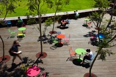 TCL_Monash-Uni-Caulfield-Campus-Green_Andrew-Lloyd-02 « Landscape Architecture Works | Landezine