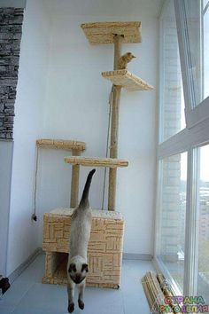 Como fazer um lar para gatos com suas próprias mãos. - Para os animais - Artesanato Country