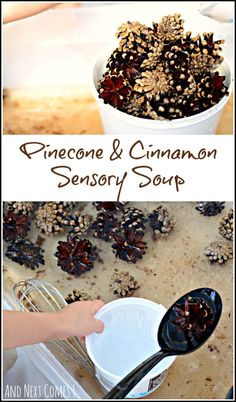 Scented water sensory play with pinecones and cinnamon. A perfect fall sensory bin for toddlers and preschoolers. Fall Sensory Bin, Sensory Tubs, Sensory Activities, Sensory Play, Preschool Activities, Sensory Boxes, Preschool Projects, Autumn Activities For Kids, Fall Preschool