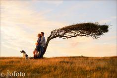 www.jofoto.co.uk Pre Wedding Photographer Wedding Photographer London, Surrey, Engagement, Nature, Travel, Naturaleza, Viajes, Destinations, Engagements