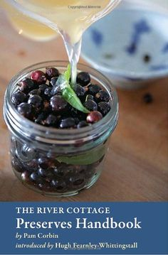The River Cottage Preserves Handbook by Pam Corbin http://www.amazon.com/dp/158008172X/ref=cm_sw_r_pi_dp_U4zXtb1D21BT2T0A