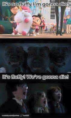 watch the first harry potter and youll get the humor in it Harry Potter World, Mundo Harry Potter, Harry Potter Jokes, Harry Potter Pictures, Harry Potter Universal, Harry Potter Fandom, Harry Potter Spells, Hogwarts, Desenhos Harry Potter