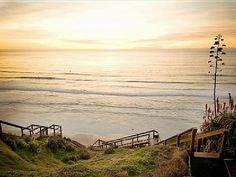Californias beautiful beaches are truly breathtaking. We'd like them to stay that way.