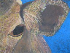 The Art Room at The Falcon Academy of Creative Arts: using the grid method, students created beautiful oil pastel drawings that were a close up of an animal.  They also created texture with their application of oil pastels.