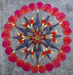 Danmala - Mandala Art by Kathy Klein