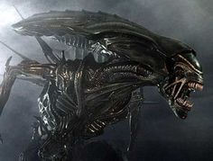 Creative Assembly's Alien game may be multigenerational Thumbnail