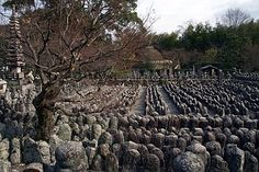 Adashino Nenbutsuji temple - Kyoto Kyoto, Temple, Vineyard, Japan, Outdoor, Outdoors, Japanese Dishes, Temples, Outdoor Games