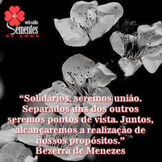BLOG - WEB RÁDIO - SEMENTES DE AMOR: BEZERRA DE MENEZES