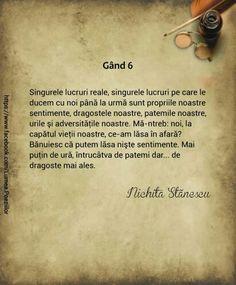 Gand 6-Nichita Stanescu