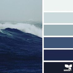 Color Tropic ❤ liked on Polyvore featuring design seeds, backgrounds, color, pictures - blue and filler