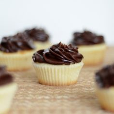 Moist white cake bites with fudge frosting reminiscent of days gone by.