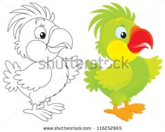 Parrot Stock Photo 116252965 : Shutterstock