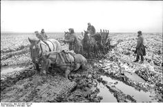 1942 Soviet Union, a German horse-drawn crew down in the Russian mud