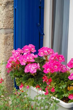 Guérande, France. From The Travel Belles.